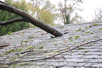 Huge limb through my Dad's Shed's roof - Photos from Hurricane Sandy - RAW and UNEDITED