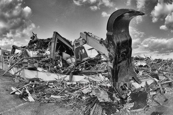 Guardian of the destroyed (B&W)